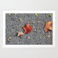 Autumn Asphalt Art Print