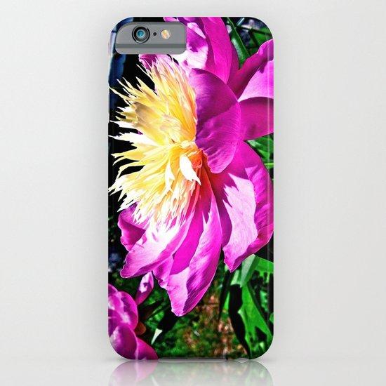 Springing Open iPhone & iPod Case