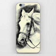 Horse-portrait iPhone & iPod Skin