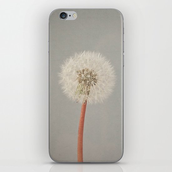 The Passing of Time iPhone & iPod Skin