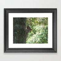 Nutcase Framed Art Print