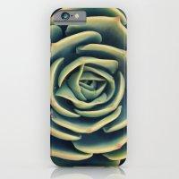 Echeveria x Imbricata Succulent iPhone 6 Slim Case