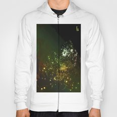 Mysterious World In the Garden Hoody