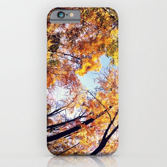 Fisheye Fall  iPhone & iPod Case