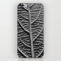 leaf vein macro II iPhone & iPod Skin