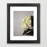 Baby Hydrangeas and Grey Framed Art Print