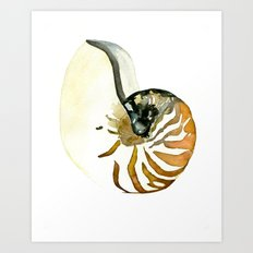Ocean Treasures No. 3 Seashell Art Print