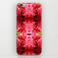 Flower Burst iPhone & iPod Skin