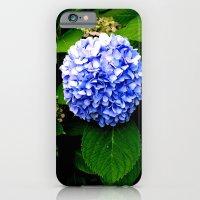 Blue Flower (Edited) iPhone 6 Slim Case