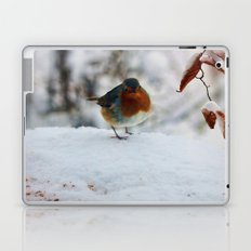 PHOTOGRAPHY-Robin Redbreast Laptop & iPad Skin