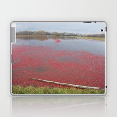 Cranberries Waiting To Be Rounded Up Laptop & iPad Skin