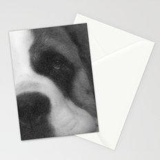 St. Bernard Portrait -- Black & White Stationery Cards