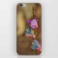 dry away iPhone & iPod Skin
