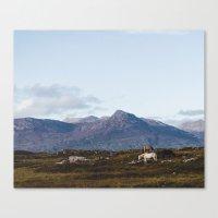 Connemara  - Horse And M… Canvas Print