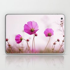Cosmos flowers Laptop & iPad Skin