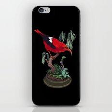 Red Bird iPhone & iPod Skin