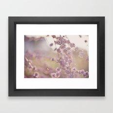 delicate pink Framed Art Print