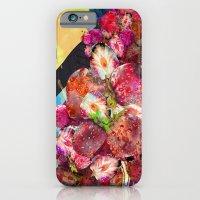 Fruit Crush iPhone 6 Slim Case
