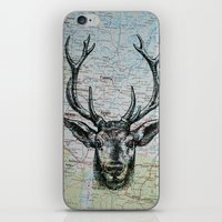 Russian Deer iPhone & iPod Skin