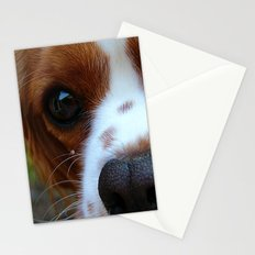 Cavalier King Charles Spaniel Stationery Cards