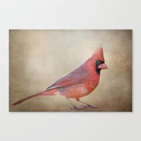 The Red Cardinal Canvas Print