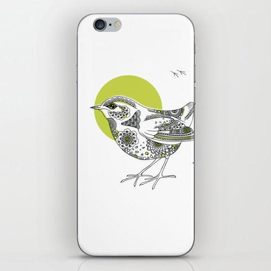 Bush Wren Xenicus Longipes iPhone & iPod Skin