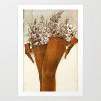 Gladiolous Art Print