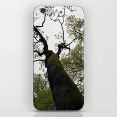 secret garden 18 iPhone & iPod Skin