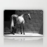 Mestizo Laptop & iPad Skin