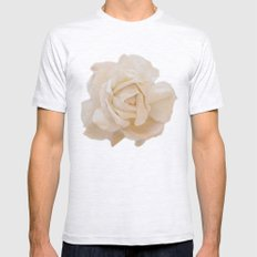 IVORY ROSE Mens Fitted Tee Ash Grey SMALL