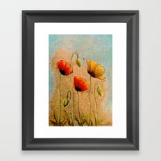Three Poppies Framed Art Print