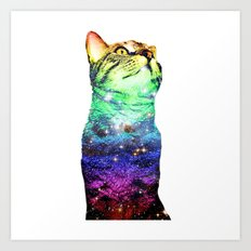 Digby is a Rainbow of a cat. Art Print