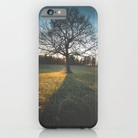 iPhone Cases featuring Lonely tree by Patrik Lovrin Photography