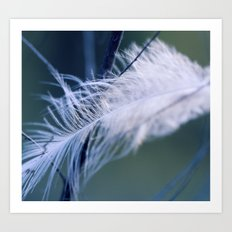 Lost Feather Art Print