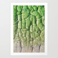 Peeling Green Art Print