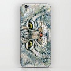 Pallas's cat 862 iPhone & iPod Skin