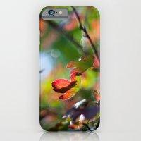 iPhone & iPod Case featuring Autumn Rainbow by Katie Kirkland Photography