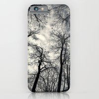 iPhone & iPod Case featuring Sky-reaching Trees by Istvan Kadar Photography
