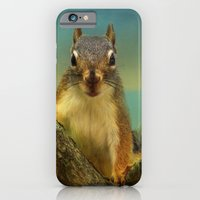 iPhone & iPod Case featuring Little Red Squirrel by TaLins
