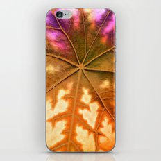 Leaf Incredible, Amber iPhone & iPod Skin