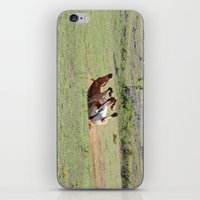 Rolling Horse iPhone & iPod Skin