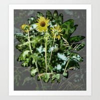 Wildflower  Art Print