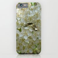 Be in a cocoon iPhone 6 Slim Case