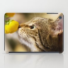 Tabby and the Flower iPad Case
