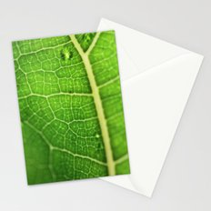 Fiddle Leaf Ficus Tree Stationery Cards
