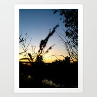 Sunset Contrast Art Print