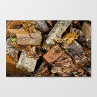 Crushed Fall Canvas Print