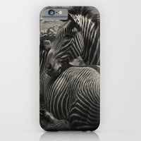 iPhone & iPod Case featuring ZEBRA by Tom Feiler