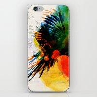 Macaw iPhone & iPod Skin