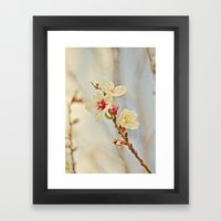 Almond Blossoms In The W… Framed Art Print